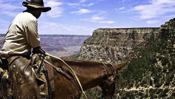 Cowboy Riding the Bright Angel Trail, Grand Canyon