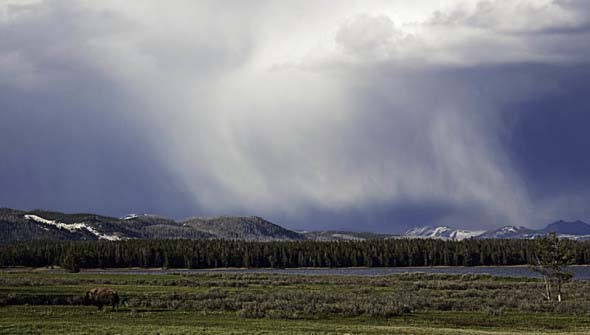 Summer Storm, Yellowstone National Park
